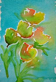 akvarel-lilleturkisblomster1_000